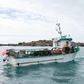 Rencontre avec les pêcheurs de homard du Cotentin et deJersey