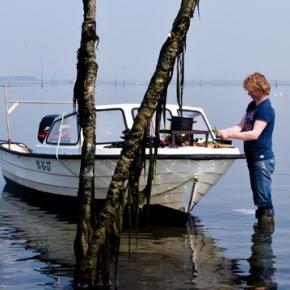 L'importance de connaître l'histoire des produits de la mer : l'exemple de FishTales
