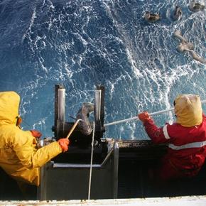 Rencontre avec les pêcheurs de légine australe deKerguelen