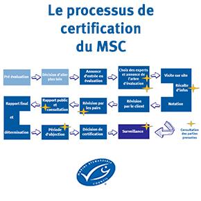 L'évaluation: l'étape obligatoire pour tenter d'obtenir le labelMSC
