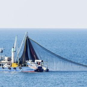 Certains engins de pêche sont-ils plus durables que d'autres?